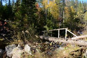 Мост через реку Грамотуха, Соболиная тропа